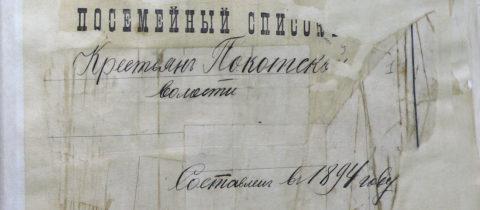 Посемейный список крестьян Покотской волости 1894 года